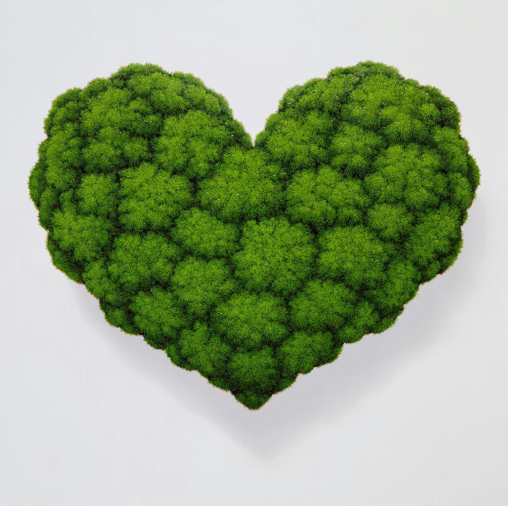 Heart_Moss,2020,oiloncanvas,72.7×72.7cm